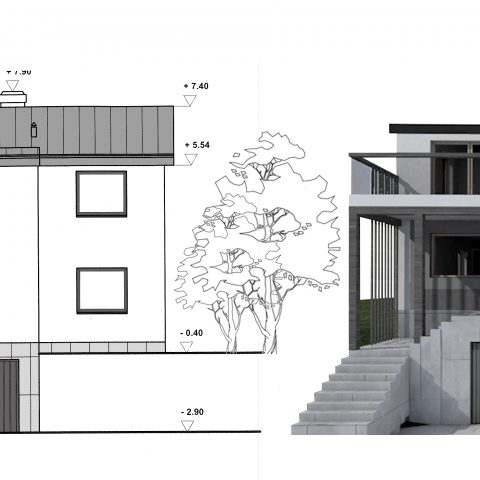 dom na wzgorzu 1